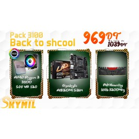 Pack level up - 3100